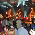 Seer Live Konzert am 7.8.2015 in Freistadt, Messehalle